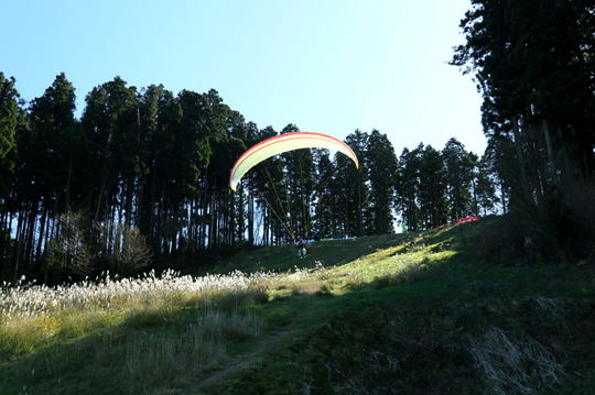 パラグライダー 1l.jpg