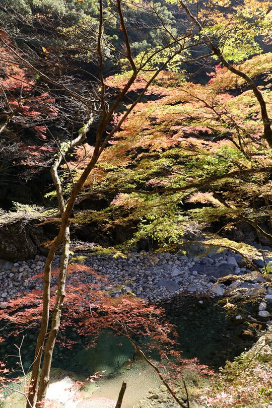 面河渓3-3l.jpg