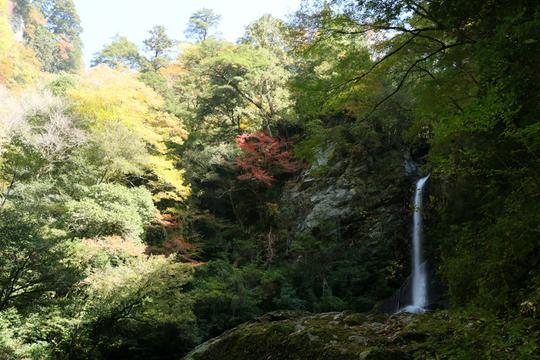 飛龍の滝1l.jpg