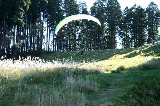 パラグライダー 8l.jpg