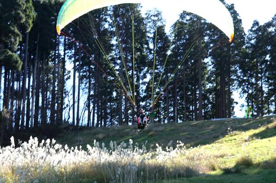 パラグライダー 9l.jpg